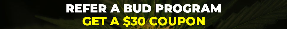 Advertisement on Best Weed Delivery